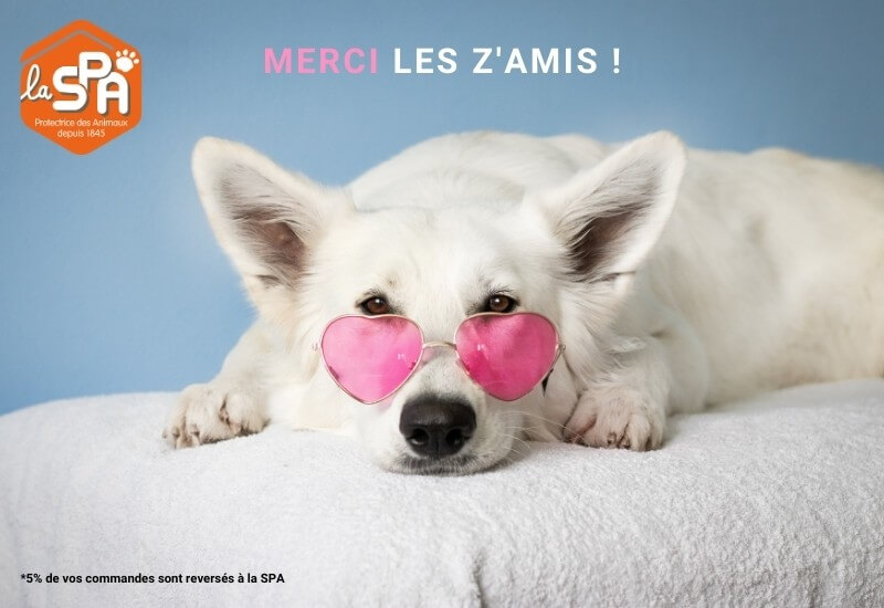 spa, don, animaux, chien, protection, animal, canin, chat